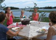 picnic at the Village